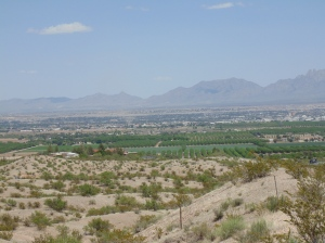 The City of Las Cruces. Desert all around!